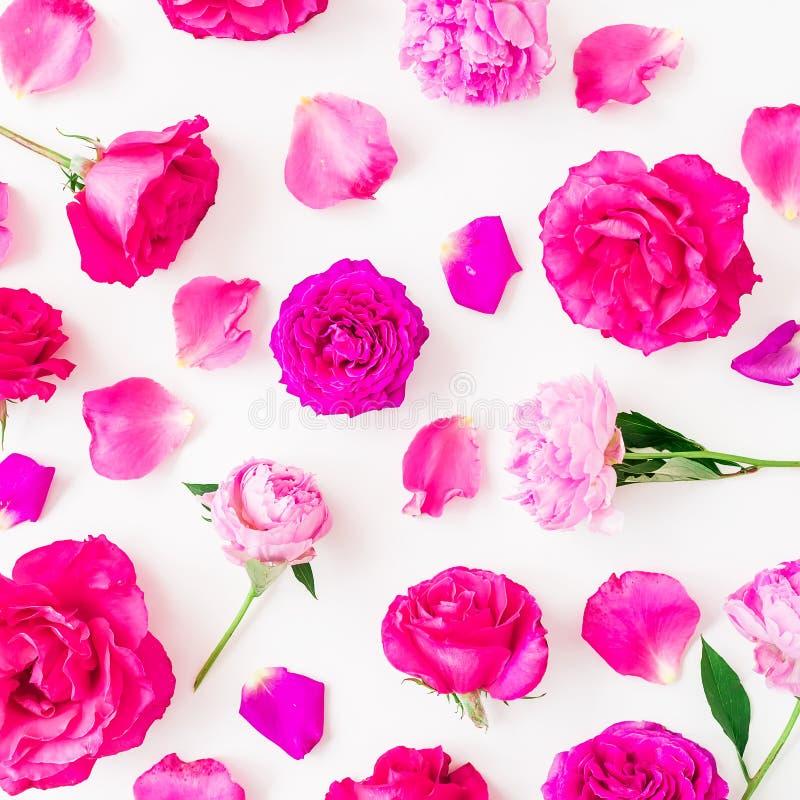 Цветочный узор пиона цветет, розы и листья на белой предпосылке Плоское положение, взгляд сверху Флористический состав образа жиз стоковое фото rf
