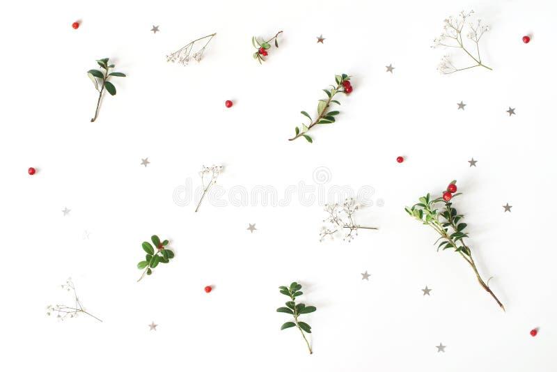 Цветочный узор рождества Состав красных ветвей клюквы, дыхание зимы ` s младенца цветет и серебряные звезды confetti стоковое изображение