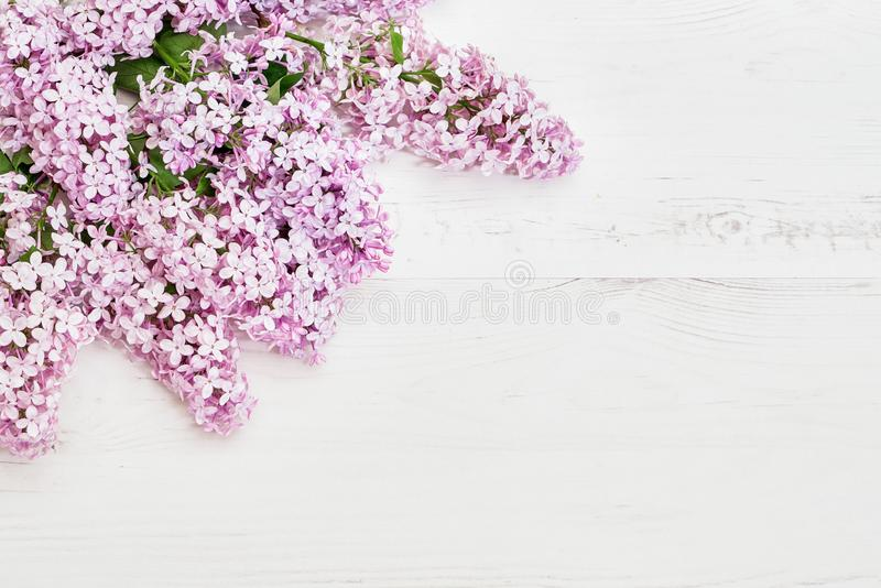 Цветочный узор розовых ветвей сирени, предпосылка цветков o стоковые изображения rf