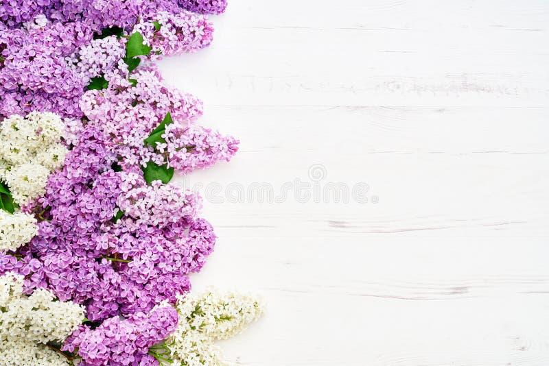 Цветочный узор розовых ветвей сирени, предпосылка цветков o стоковое фото rf