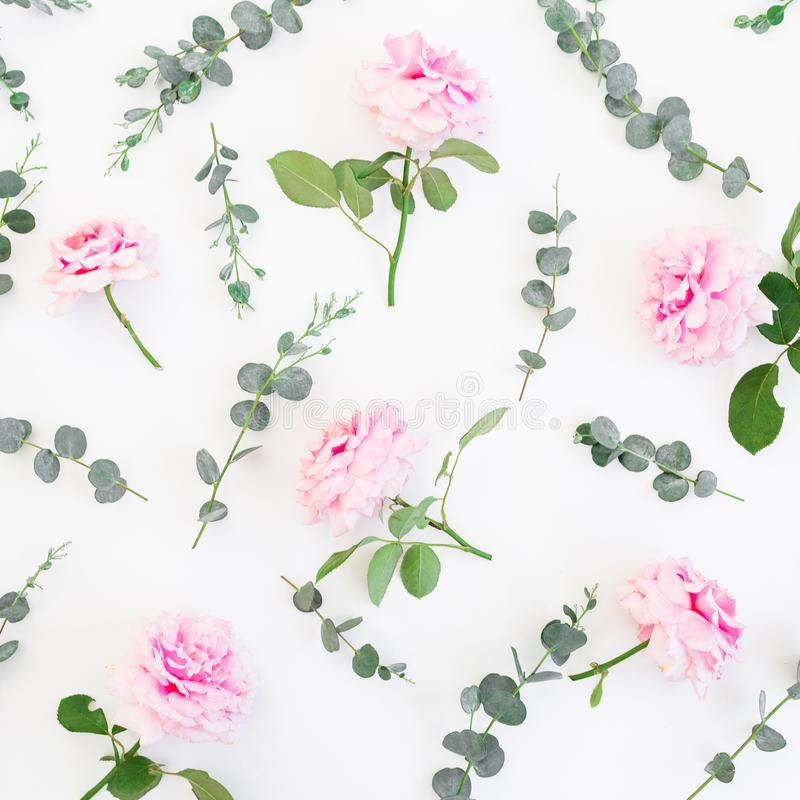 Цветочный узор розовых цветков и эвкалипта роз на белизне r стоковая фотография