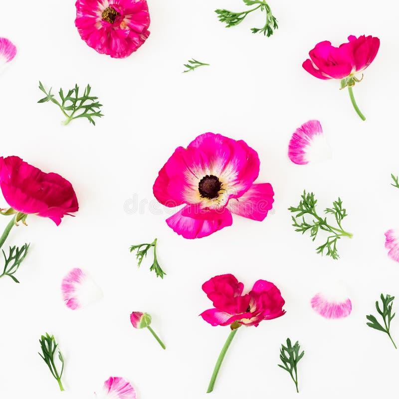 Цветочный узор розовых цветков на белой предпосылке r стоковое фото