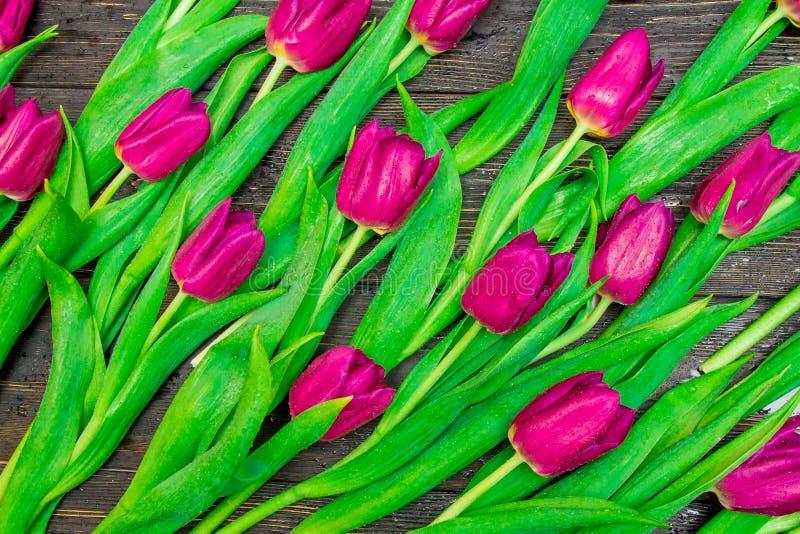 Цветочный узор сделанный темных розовых тюльпанов на черной предпосылке Flatlay, взгляд сверху Валентайн предпосылки s стоковая фотография rf