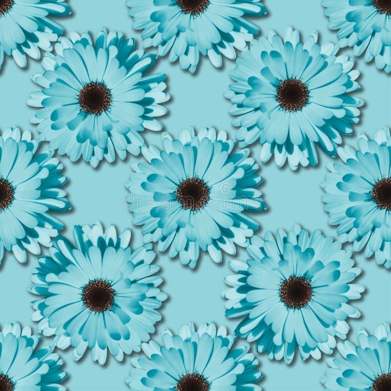 Цветочный узор стоцвета или gerbera безшовный стоковое фото rf