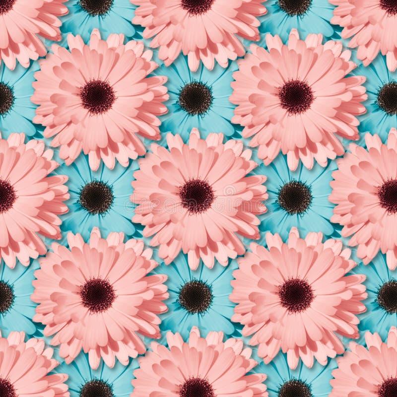 Цветочный узор стоцвета или gerbera безшовный стоковая фотография