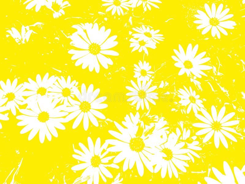 Цветочный узор с белой маргариткой цветет на желтой предпосылке стоковые фотографии rf