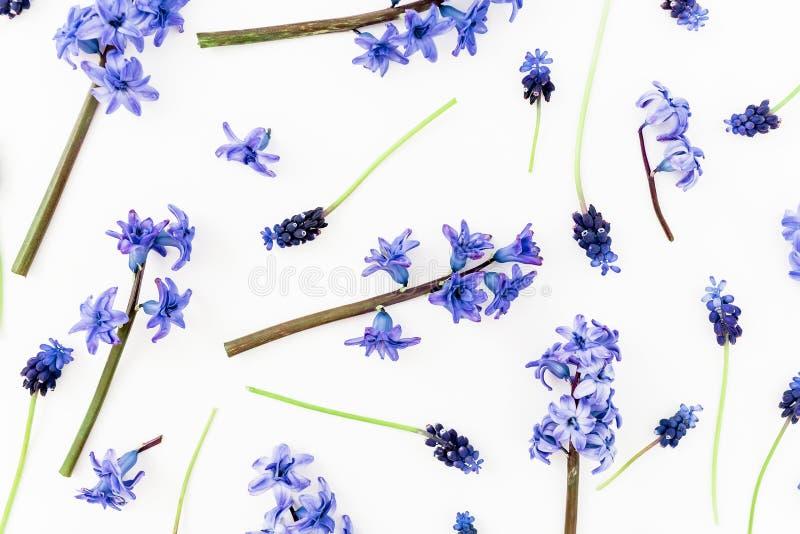 Цветочный узор с голубыми или розовыми цветками и лепестками на белой предпосылке r стоковые фото