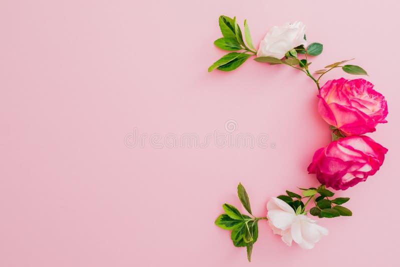 Цветочный узор с розами и листьями на розовой предпосылке Плоское положение стоковое изображение rf