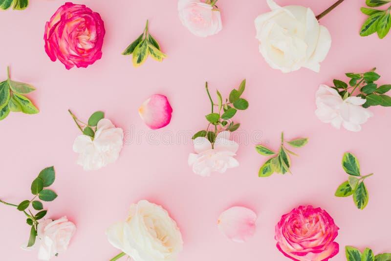 Цветочный узор с розами и листьями на розовой предпосылке r стоковые изображения