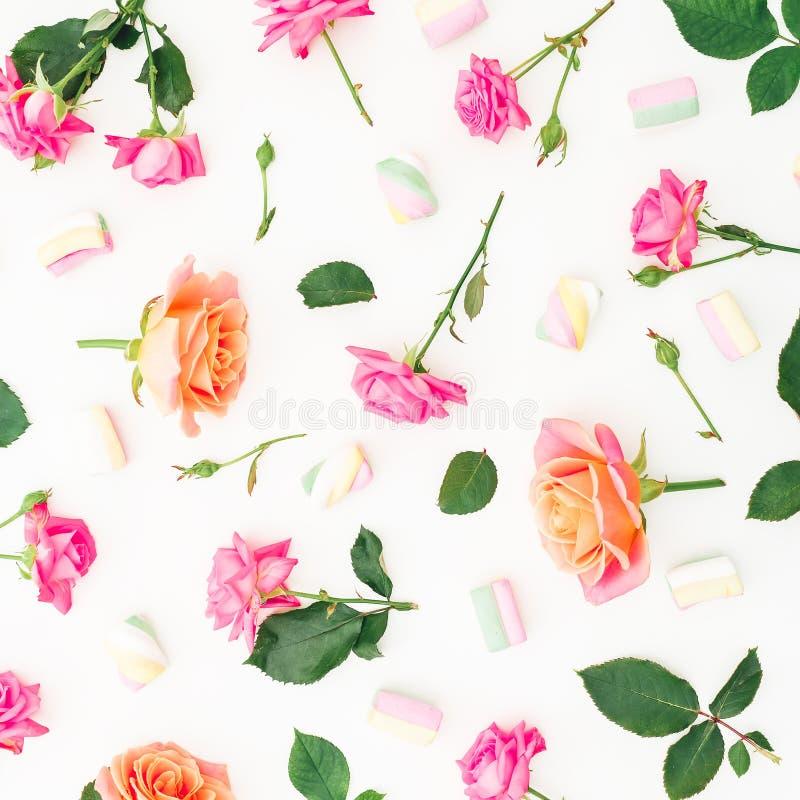 Цветочный узор с розовыми цветками роз и лепестками роз на белой предпосылке красный цвет поднял Плоское положение, взгляд сверху стоковое изображение