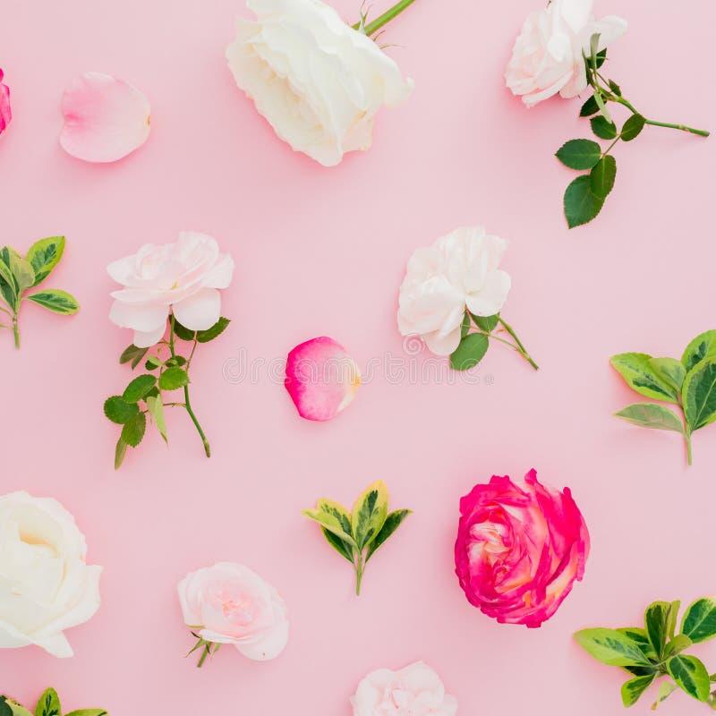Цветочный узор с цветками белых и красных роз на розовой предпосылке Плоское положение, взгляд сверху стоковая фотография