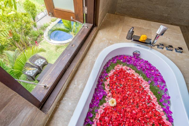 Цветы в ванной рядом с окном стоковое изображение rf