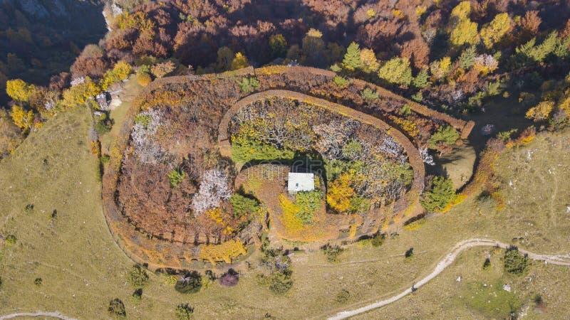 Цветы осени теплые Закамуфлированный охотящся кабина окруженная деревьями и изгородями стоковые изображения rf