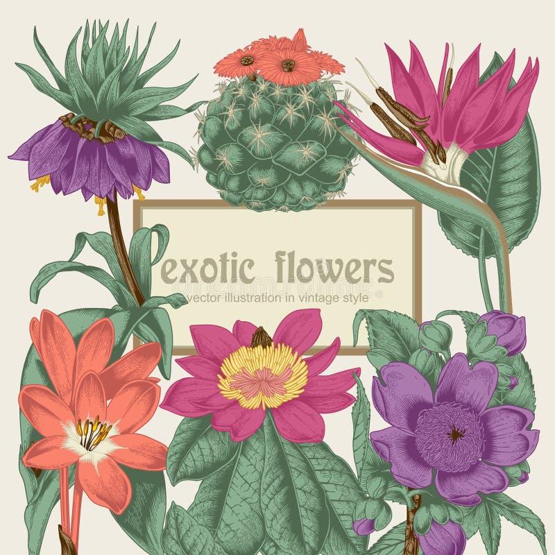 Цветы Открытка года сбора винограда вектора тропическо Vegetable картина Ботаническая тема иллюстрация вектора