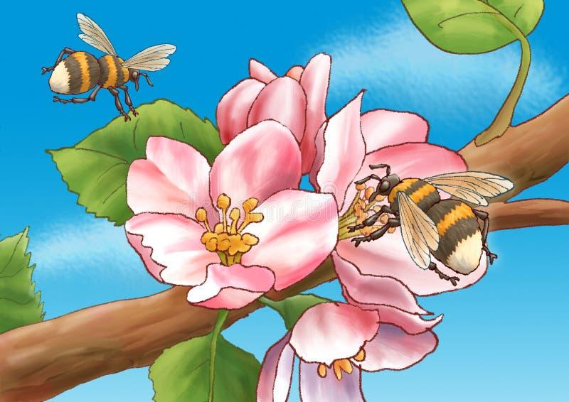 цветы шмелей иллюстрация штока