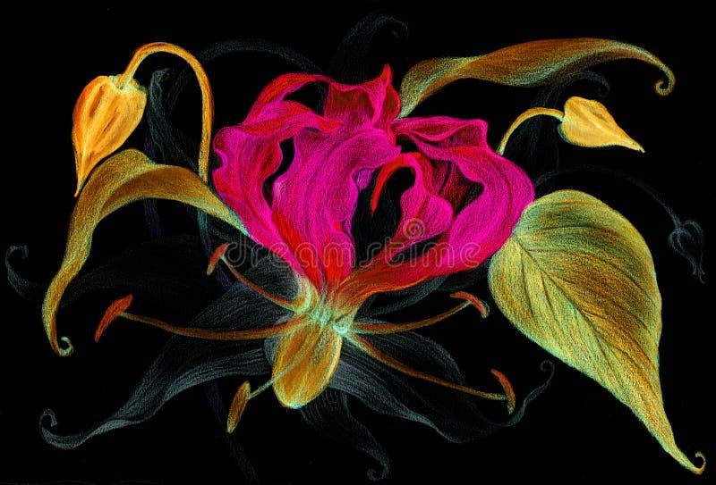 Цветы Gloriosa - ветвь с цветком, бутонами и листьями Безшовная предпосылка Чертеж карандаша бесплатная иллюстрация