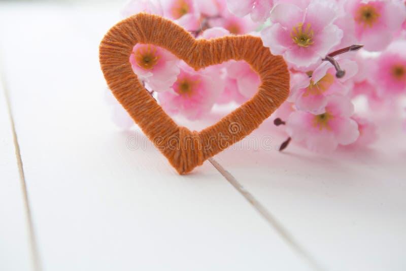 Цветя ветвь с розовыми чувствительными цветками на деревянной поверхности стоковое изображение