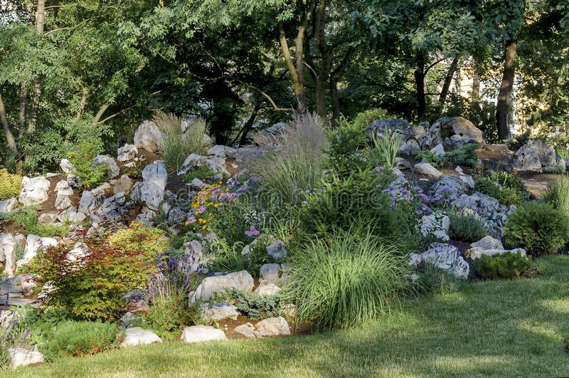 Цветя сад утеса или rockery весной стоковое фото
