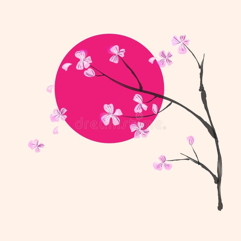 Цветя sacura разветвляет на предпосылке малинового круга стоковое фото rf