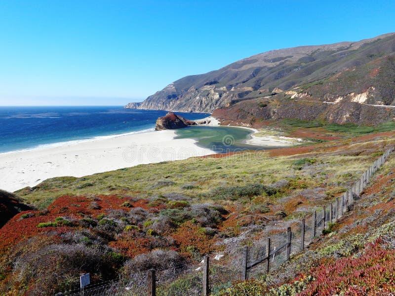 Цвет большого Sur Калифорнии стоковые фотографии rf