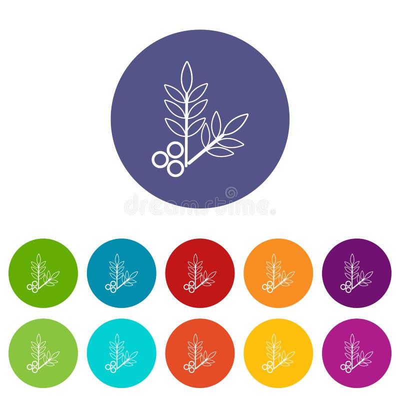 Цвет вектора листьев eco курорта установленный значками иллюстрация штока