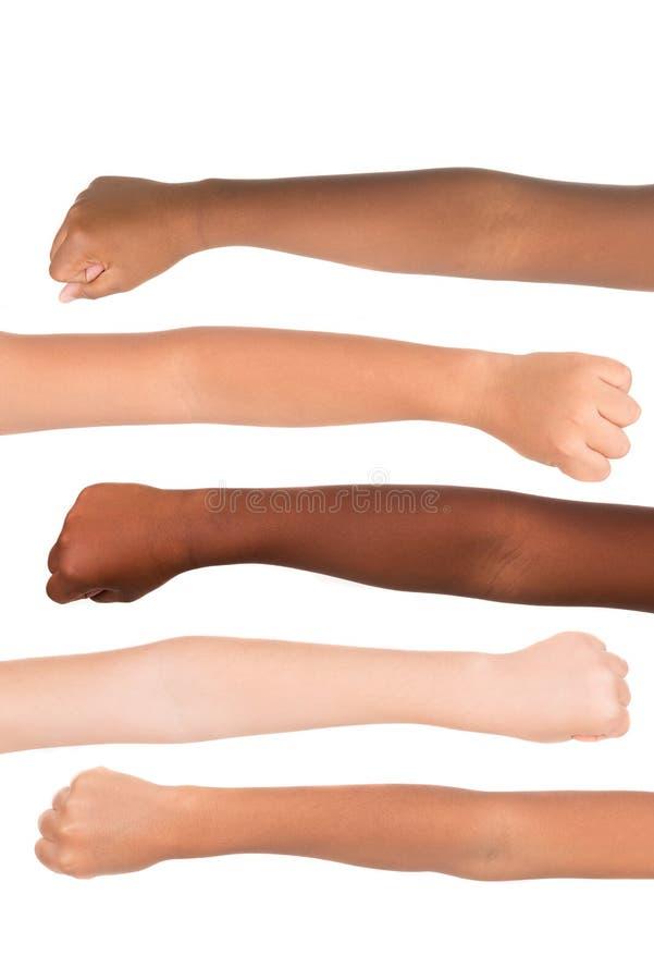 Цвет кожи стоковые изображения rf