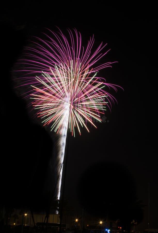 Цвет мадженты фейерверков стоковая фотография