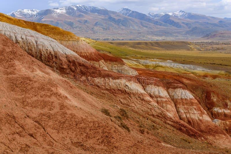 Цвет пустыни степи гор стоковые фото