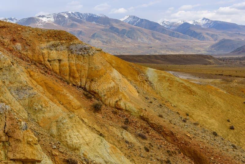 Цвет пустыни степи гор стоковое фото