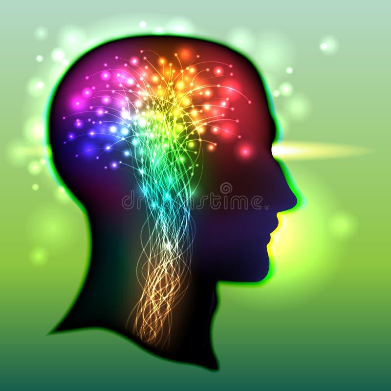 Цвет человеческого мозга нейронов иллюстрация штока