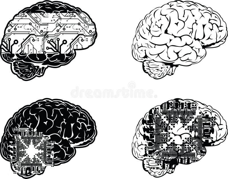 цвет электронные 4 мозга один комплект бесплатная иллюстрация