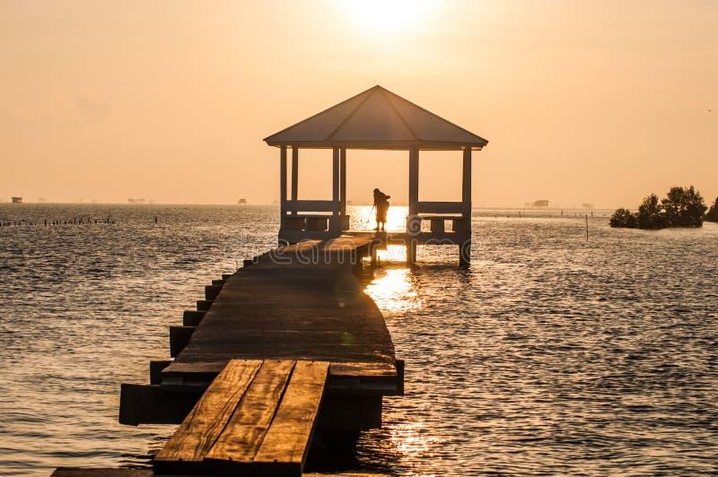 Цементируйте лес мангровы следа дорожки и природы павильона с светлым восходом солнца стоковое фото rf