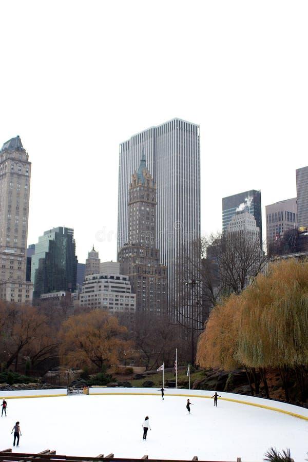центральный парк в декабре стоковые изображения
