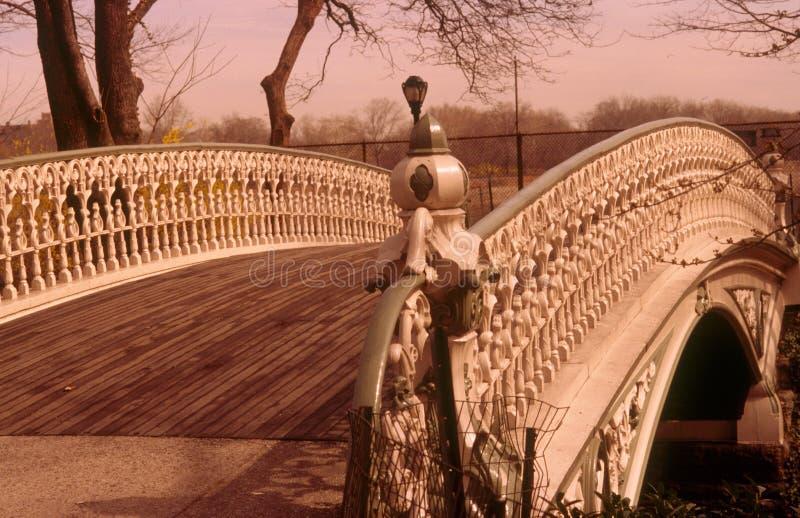 центральный парк nyc стоковая фотография rf
