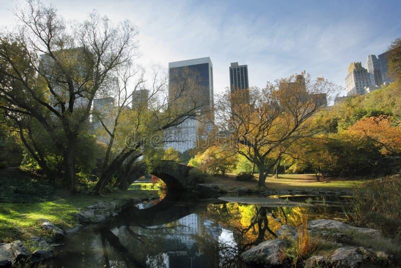 центральный парк nyc стоковое фото rf