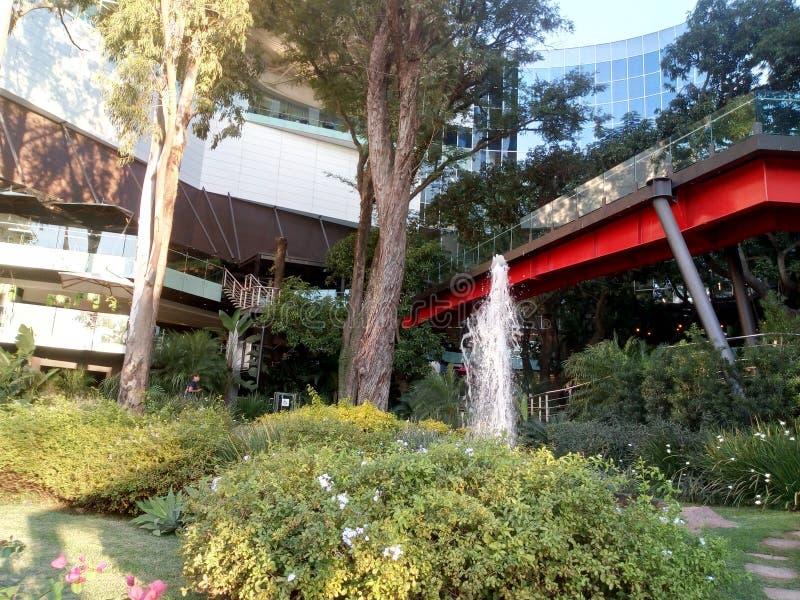 Центральный сад идите галерея в Asunción стоковое изображение rf