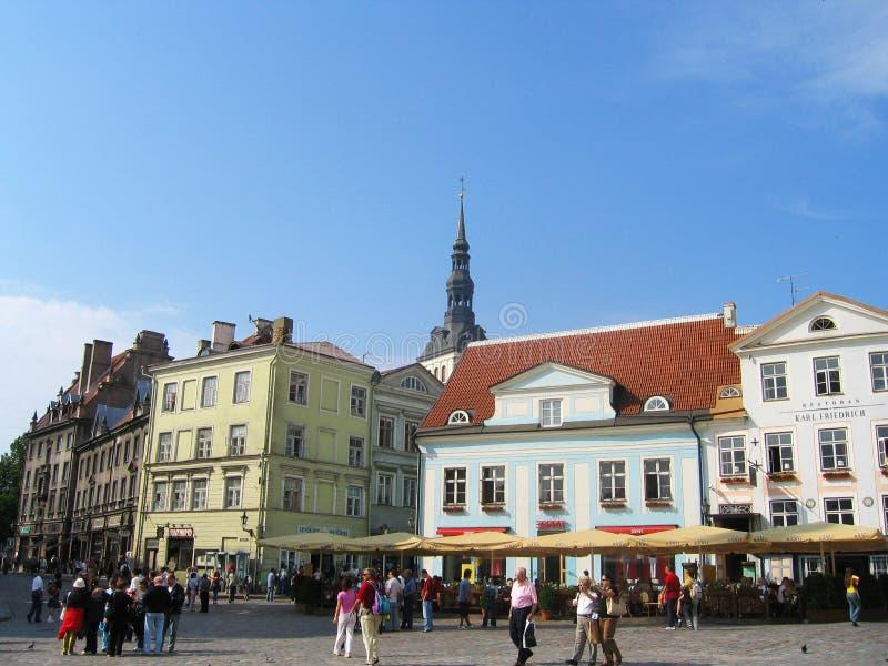 Центральная площадь ратуши в Таллине, Эстонии стоковые фото