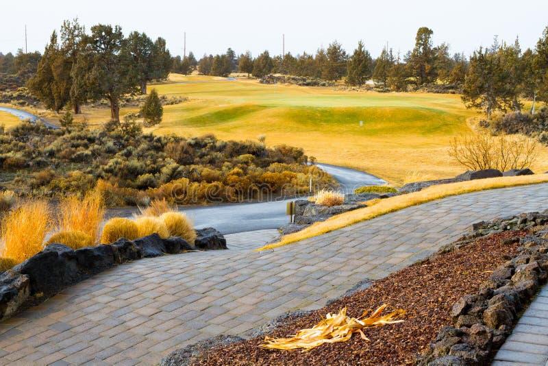Центральное поле для гольфа Орегона стоковая фотография
