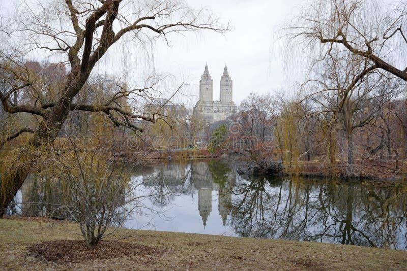 центральный парк nyc стоковые фото