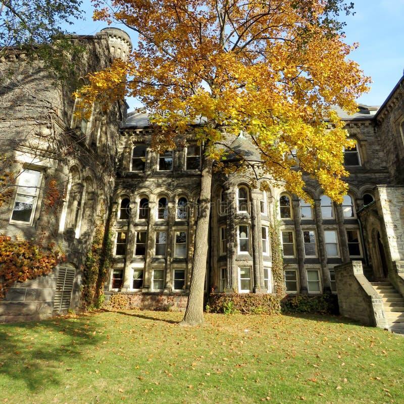 Download Центр 2016 Gerstein университета Торонто Стоковое Изображение - изображение насчитывающей канада, центр: 81802213