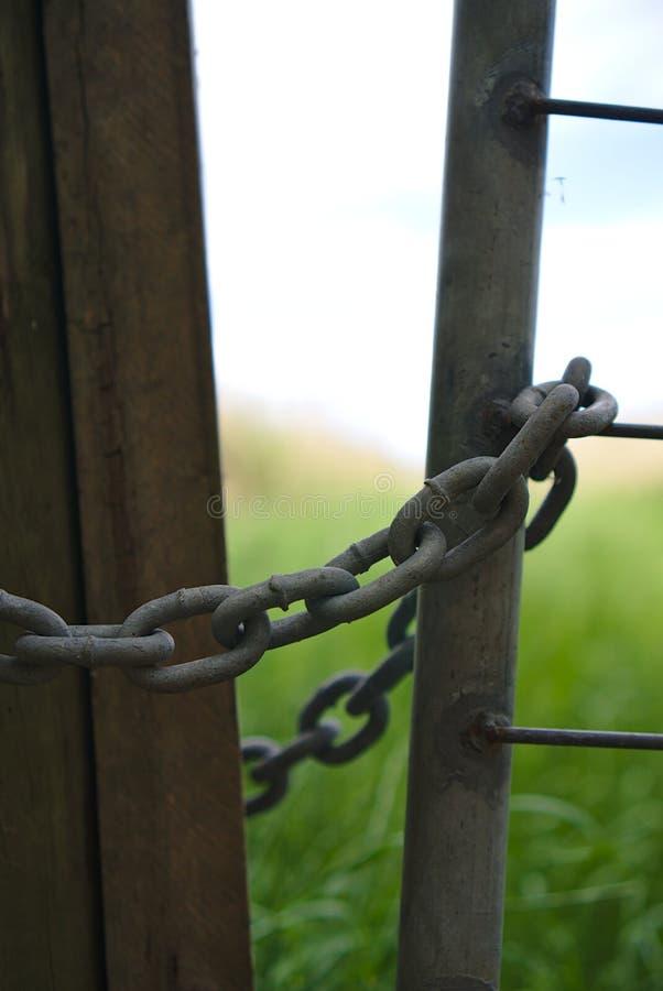 Цепи на воротах стоковое фото rf