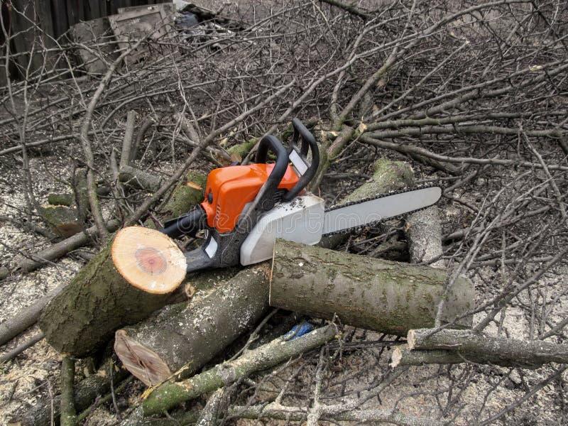 Цепная пила лежит на журналах, среди куч ветвей и опилк результат резать ветви и пилить древесину, концепция a стоковые изображения rf