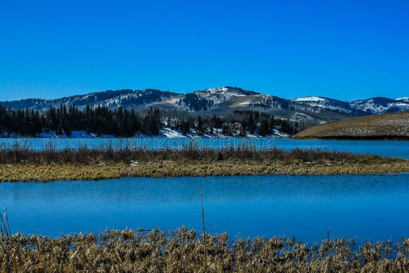 Цепное озеро, цепные озера захолустный парк, Альберта, Канада стоковое изображение