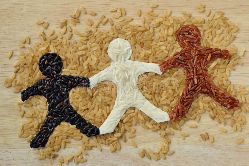 Цепь людей риса стоковые изображения