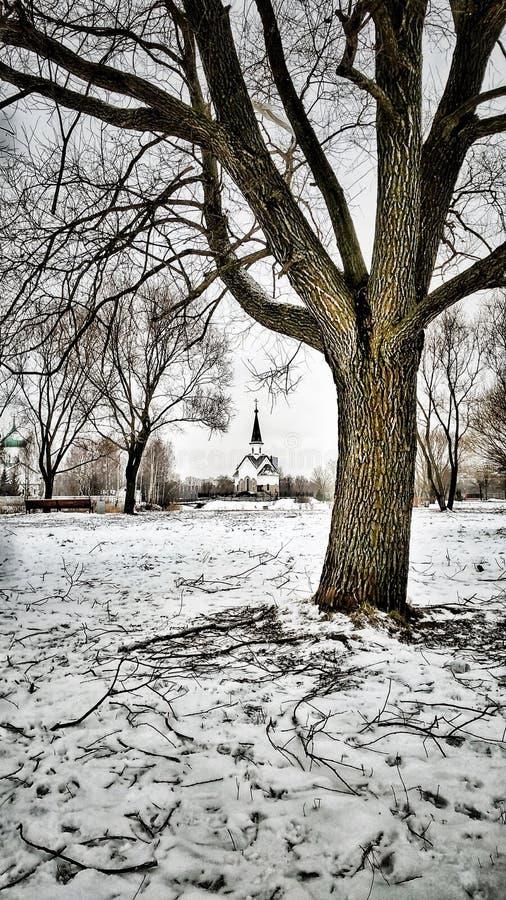 Церковь в парке города в зиме стоковая фотография
