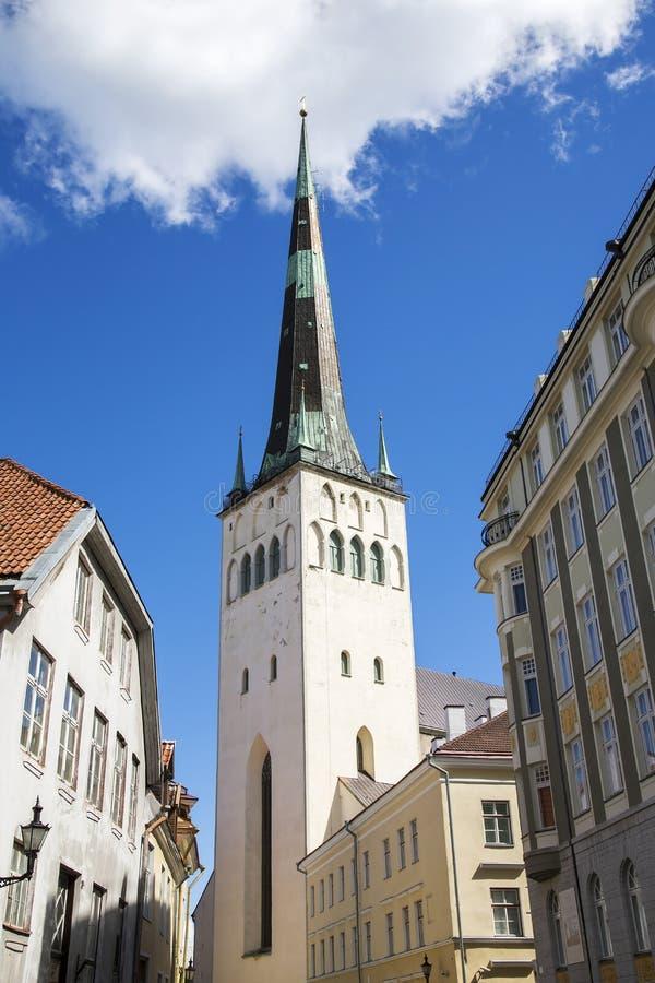Церковь Olaf Святого (kirik Oleviste) стоковые изображения rf