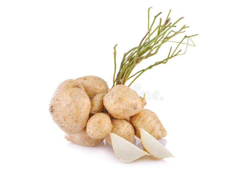 Целый и отрезанные фасоль батата или jicama с стержнем на белой предпосылке стоковое фото rf