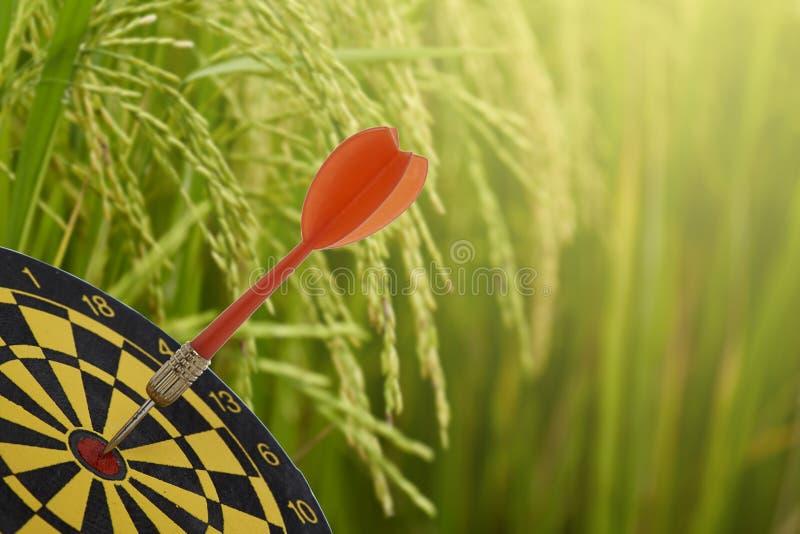 Цель продаж риса стоковое изображение