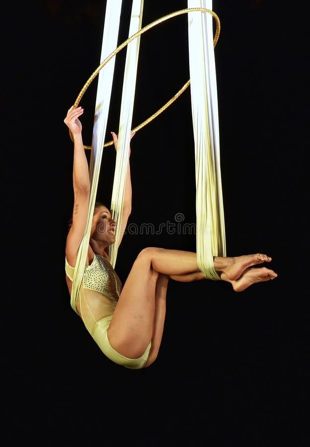 Циркаческие атлетические художники стоковые изображения