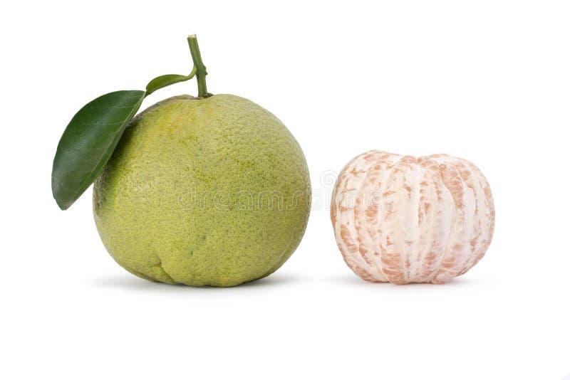 Цитрусовые фрукты помела стоковая фотография